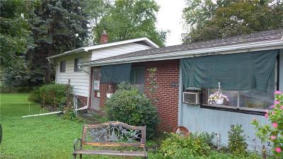 Kent Single Family Home For Sale: 4545 State Route 43