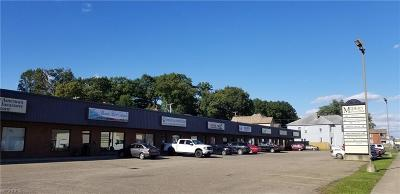 Zanesville Commercial For Sale: 965 Linden Ave