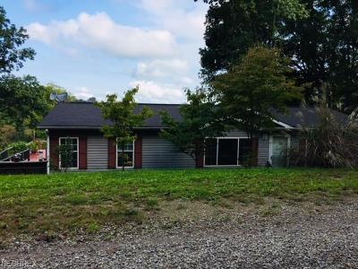 Guernsey County Single Family Home For Sale: 65871 Hopewell Rd