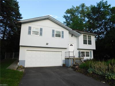 North Royalton Single Family Home For Sale: 10101 York Rd
