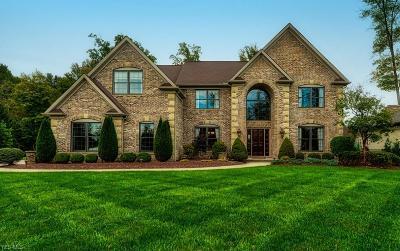 North Royalton Single Family Home For Sale: 10325 Buckeye Trail