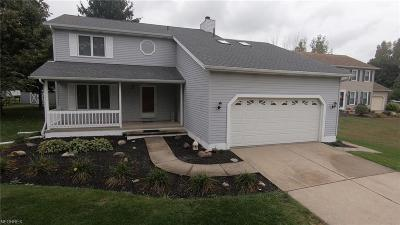 Mentor Single Family Home For Sale: 9585 Graystone Ln