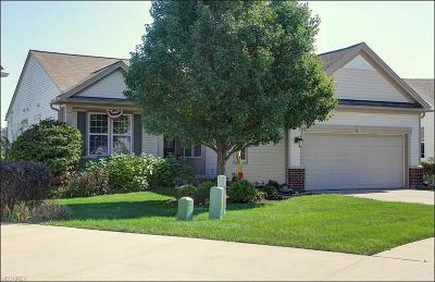 North Ridgeville Single Family Home For Sale: 9471 Drury Way