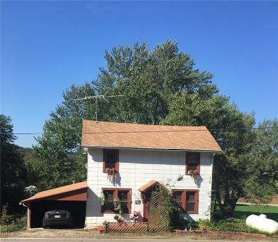 Ashland County Single Family Home For Sale: 2454 State Route 60