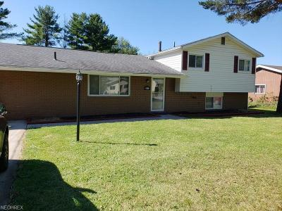 North Ridgeville Single Family Home For Sale: 5900 Lear Nagle Rd