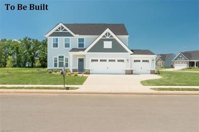 North Ridgeville Single Family Home For Sale: 9303 Nash Ln