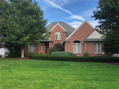 Canfield Single Family Home For Sale: 185 Queens Ln