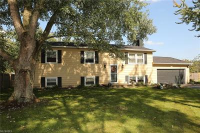 Single Family Home For Sale: 13549 West Calla Rd