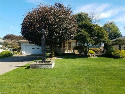 Youngstown Single Family Home For Sale: 3865 Artmar Dr