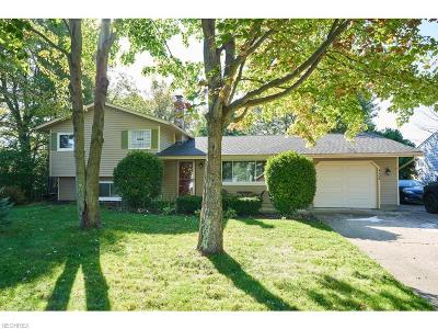 Brunswick Single Family Home For Sale: 4162 Miner Dr