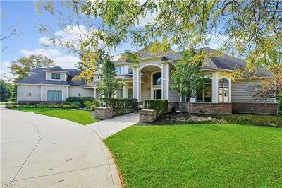 Aurora Single Family Home For Sale: 550 Bristol Dr