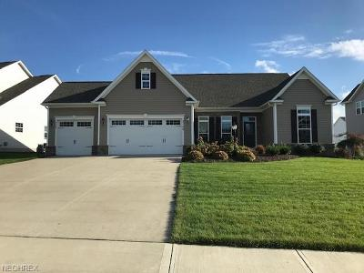 Brunswick Single Family Home For Sale: 3126 Portsmouth Dr