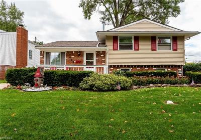 Elyria Single Family Home For Sale: 712 Georgetown Ave