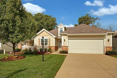 Parma Single Family Home For Sale: 5430 Peachtree Ln North