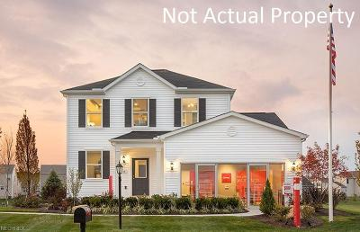 Licking County Single Family Home For Sale: Lot 269 Keela Dr