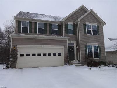 Twinsburg Single Family Home For Sale: 9309 Sasha Ct