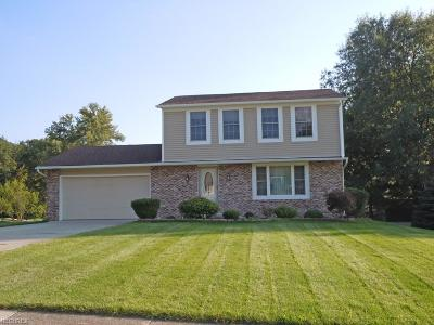 North Royalton Single Family Home For Sale: 8637 Center Dr