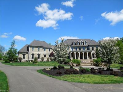 Chagrin Falls Single Family Home For Sale: 107 Ashleigh Drive