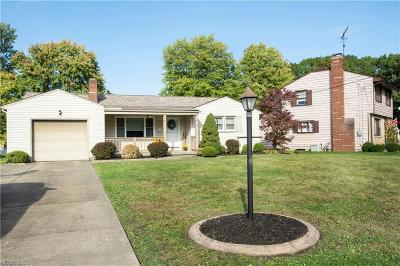 Youngstown Single Family Home For Sale: 24 Lucerne Ln
