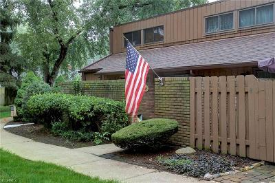 Avon Lake Condo/Townhouse For Sale: 33803 Electric Blvd #G-17