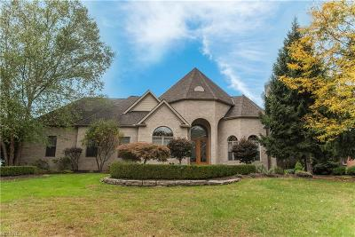 Brecksville Single Family Home For Sale: 4551 Hunting Valley Ln