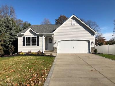 Lake County Single Family Home For Sale: Parcel A Maple St