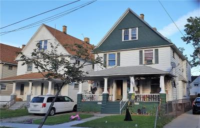 Cleveland Multi Family Home For Sale: 2045 West 101st St