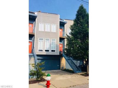 Cleveland Single Family Home For Sale: 1223 West 67th St