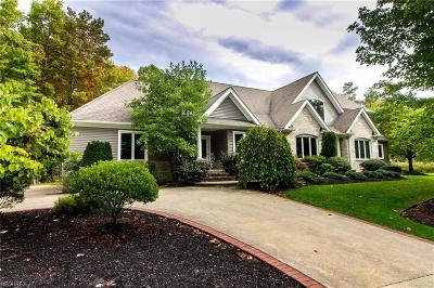 Mentor, Mentor-on-the-lake Single Family Home For Sale: 8675 Mentor Road