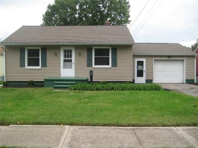 Painesville OH Single Family Home For Sale: $84,900
