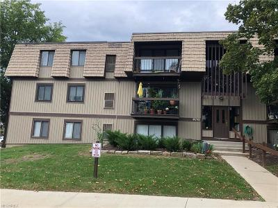 North Royalton Condo/Townhouse For Sale: 9751 Sunrise Blvd #M9