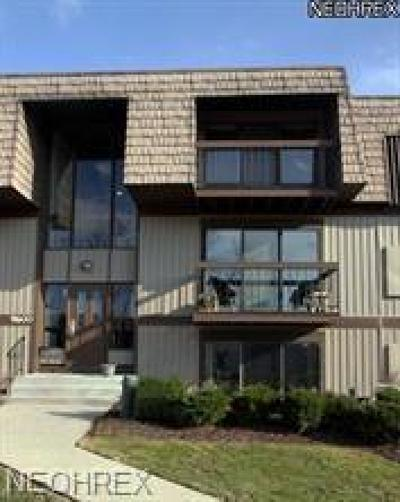 North Royalton Condo/Townhouse For Sale: 9600 Cove Dr #B3