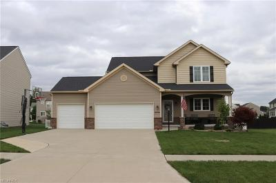 North Ridgeville Single Family Home For Sale: 38547 Terrell Dr