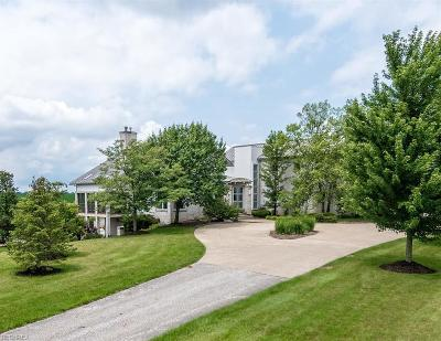 Geauga County Single Family Home For Sale: 13720 Hale Rd