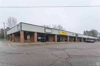 Stark County Commercial For Sale: 3110 Whipple Ave Northwest