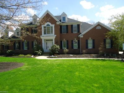 Copley Single Family Home For Sale: 4540 Swan Lake Dr