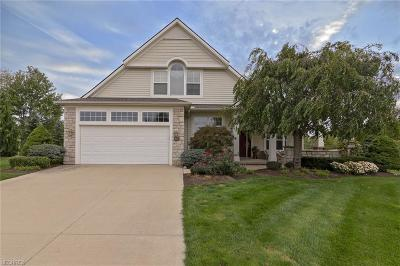 Broadview Heights Single Family Home For Sale: 107 Melrose Ln