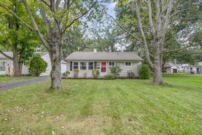 Elyria Single Family Home For Sale: 415 Ambler Dr