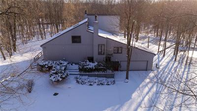 Geauga County Single Family Home For Sale: 14020 Patriot Dr