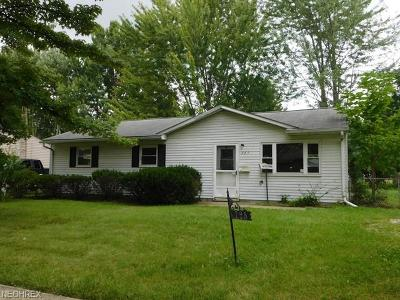 Elyria Single Family Home For Sale: 725 Delaware Ave