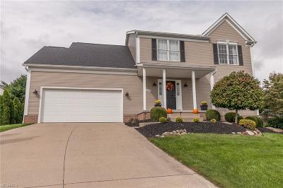 Kent Single Family Home For Sale: 4879 Gate Post Ln