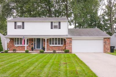 Elyria Single Family Home For Sale: 417 University Ave