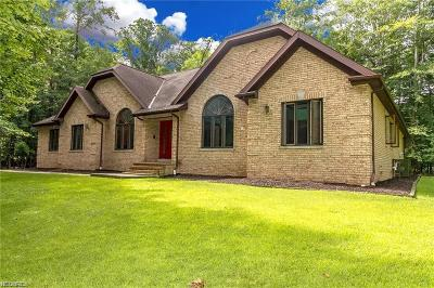 Lake County Single Family Home For Sale: 2910 Millgate Dr