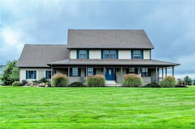 Canfield Single Family Home For Sale: 7550 Lydia Ln