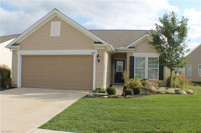 North Ridgeville Single Family Home For Sale: 9263 Montgomery Dr
