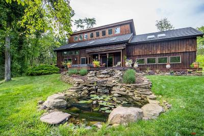 Columbiana County Single Family Home For Sale: 48589 Metz Rd