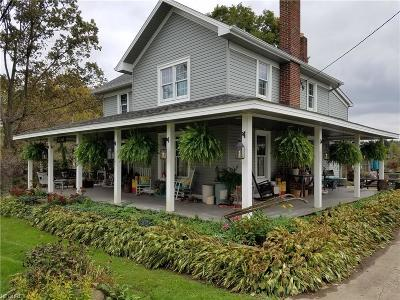 Single Family Home For Sale: 27169 Georgetown Rd