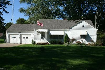 Elyria Single Family Home For Sale: 2815 West River Rd South