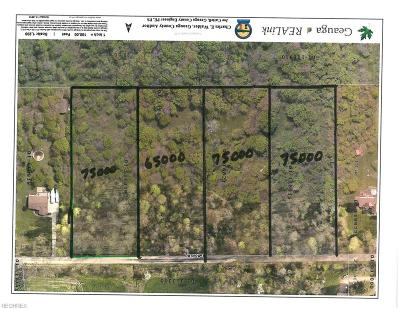 Geauga County Residential Lots & Land For Sale: Stafford Rd