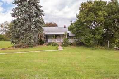 Medina County Single Family Home For Sale: 3521 Poe Rd